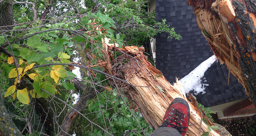 An closer look image at storm damage from up high.