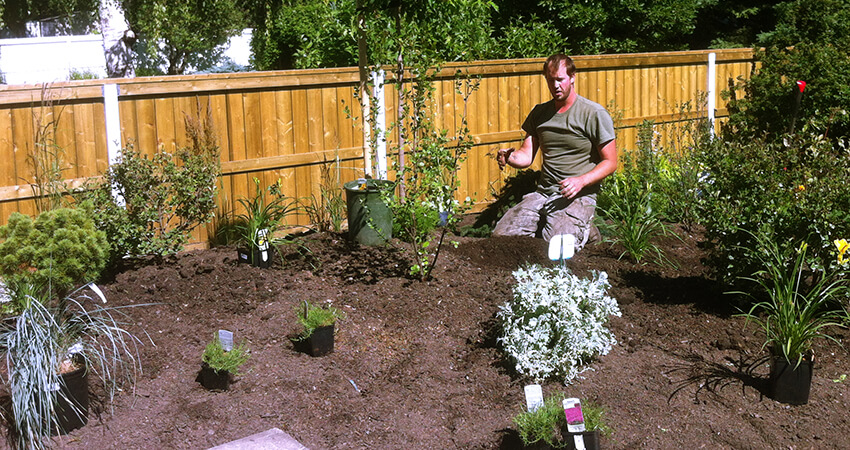 An image of an Arborest employee on his knees planting smaller trees and shrubs
